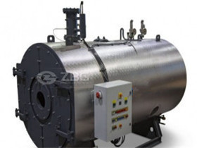 10000L/H Gas/Oil/Dual Fuel Hot Water Boiler