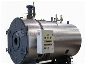 Low Pressure Gas Fired Steam Boiler (WNS4-1.25)