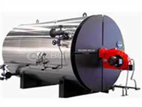 Coal Fired Boiler Parameters Manufacturer